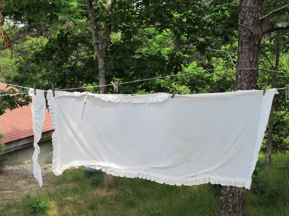 31 Drying
