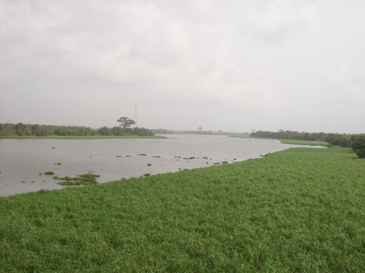 18902501-river2