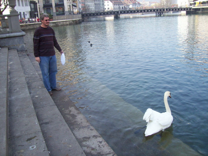 18985741-craig,_fabric,_swan