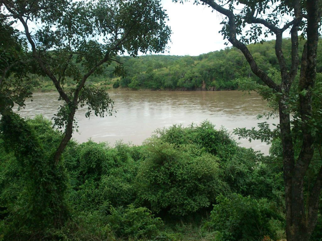 zambeziRiver