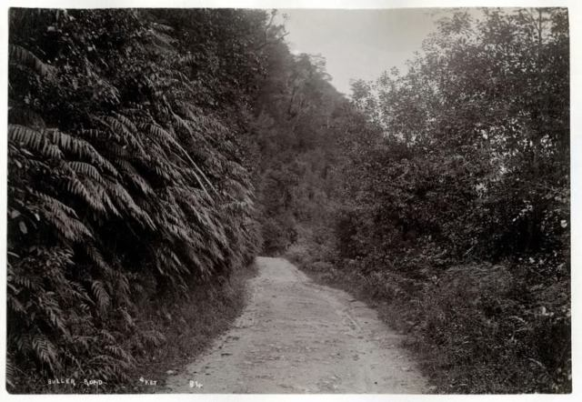 3Buller Road 1890s